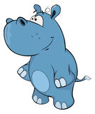 A little hippo. Cartoon Stock Photos