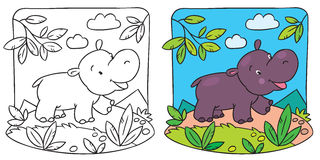 Little hippo coloring book. Coloring picture of little fun hippo running down the road stock illustration