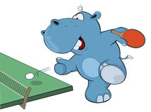 Little Hippo playing table tennis Royalty Free Stock Photo