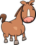 Little horse or foal cartoon Stock Image