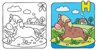 Little horse or pony coloring book. Alphabet H Stock Image
