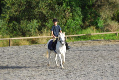 Little horse rider Royalty Free Stock Image