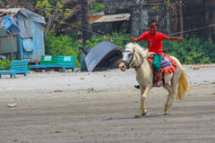 Little Horse Rider. People love to ride horse beside the sea beach. this boy gives rent to the people for horse riding royalty free stock image