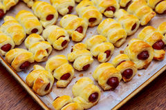 Little hot dogs rolled in dough and baked Stock Photography