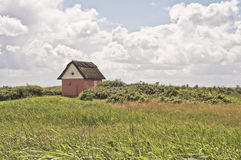 Little house. Little danish house with thatch royalty free stock photography