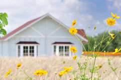 Little house Royalty Free Stock Images