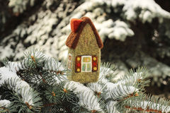 Little house on fir tree. Little house on  fir tree brunches with snow Stock Image