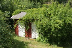 Little house in the garden. A little red shed in the garden Stock Image