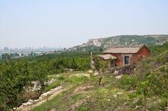 Little house on the hillside Stock Image