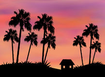 Little House between Palm Trees Royalty Free Stock Images