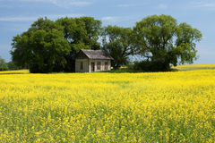 Little House on the Prairies Royalty Free Stock Image