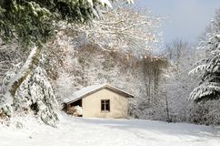 The little house in the snowy forest royalty free stock photo