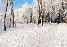Little house in winter forest Stock Photo