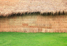 Little hut in green grass Stock Images