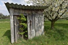 Little Hut under Cherry Blossom Stock Images