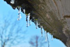 Little icicles on a wooden board against the sky royalty free stock photo