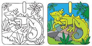 Little iguana coloring book. Alphabet I Royalty Free Stock Image