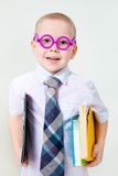 Little intelligent boy Stock Image