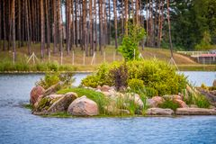 Little island in a lake with green plants. Dubingiai, Lithuania Royalty Free Stock Photography