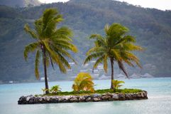 Little Island Oasis in Bora Bora royalty free stock photo