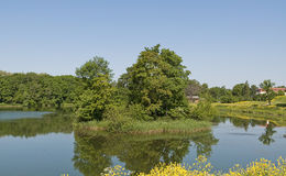 Little island in a pond Royalty Free Stock Photo