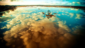 Little island at sunset. Nature landscape scenery of field and tree flood with water. Blue and sunset clouds reflected on water, aerial view Royalty Free Stock Image