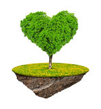 Little island and tree in the shape heart. Isolated on white background Stock Photos