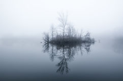 Little island with trees Royalty Free Stock Images