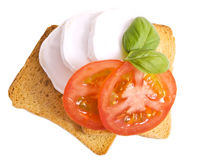 Little italian lunch. Toast with cheese and tomatoes with basil on a white background Royalty Free Stock Photo
