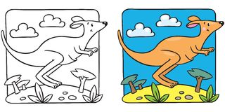 Little kangaroo coloring book Royalty Free Stock Photography