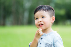 Little kid. Asian young little boy at outdoor royalty free stock image