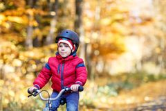 Little kid boy in colorful warm clothes in autumn forest park driving a bicycle. Active child cycling on sunny fall day stock photo