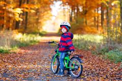 Little kid boy in colorful warm clothes in autumn forest park driving a bicycle. Active child cycling on sunny fall day stock photos