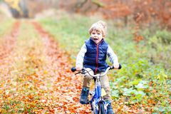 Little kid boy in colorful warm clothes in autumn forest park driving bicycle. Active child cycling on sunny fall day in. Nature. Safety, sports, leisure with royalty free stock photos