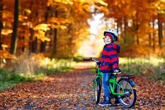 Little kid boy in colorful warm clothes in autumn forest park driving a bicycle Stock Images