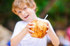 Little kid boy drinking coconut juice on tropical beach Stock Photography