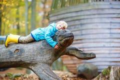 Little kid boy having fun on autumn playground Stock Photos
