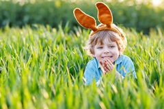 Little kid boy having fun with traditional Easter egg hunt. Cute little kid boy with bunny ears having fun with traditional Easter eggs hunt on warm sunny day Stock Photo