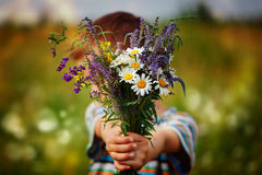 Little kid boy holding bouquet of fields flowers. Child giving flowers Royalty Free Stock Photography