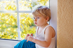 Little kid boy looking out of the window on yellow autumn tree. Stock Photos