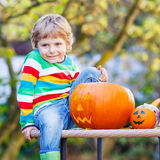 Little kid boy making jack-o-lantern for halloween in autumn gar Royalty Free Stock Photography