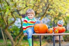 Little kid boy making jack-o-lantern for halloween in autumn gar. Den, outdoors. Having fun on sunny warm october day Stock Photo
