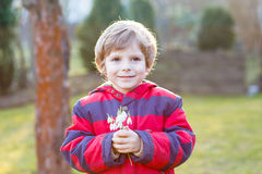 Little kid boy in red jacket holding snowdrop Stock Images