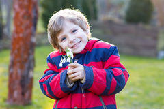 Little kid boy in red jacket holding snowdrop flowers Stock Photos