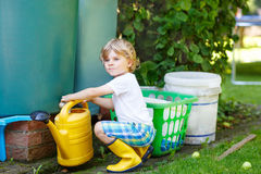 Little kid boy watering plants in garden in summer Stock Image