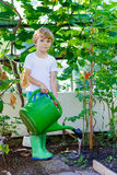 Little kid boy watering plants in greenhouse Stock Photography
