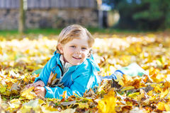 Little kid boy with yellow autumn leaves in park royalty free stock photo