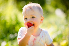 Little kid eating strawberry Royalty Free Stock Image