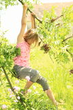 Little kid - girl hanging on branch Royalty Free Stock Photo
