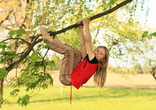 Little kid - girl hanging on branch stock photos